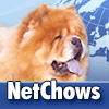 Netchows